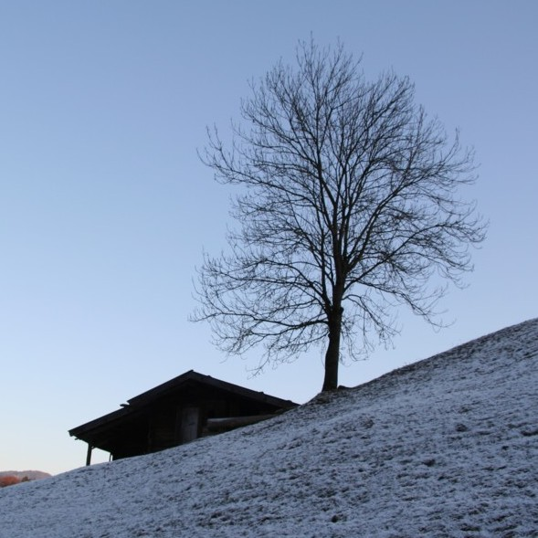 House in Winter II