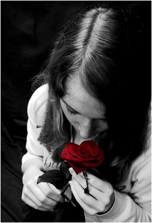 smelling a red rose