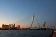 Open bridges in Rotterdam